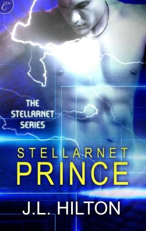 Review: Stellarnet Prince by J.L. Hilton