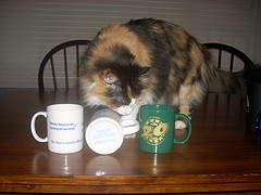 mellie and mugs