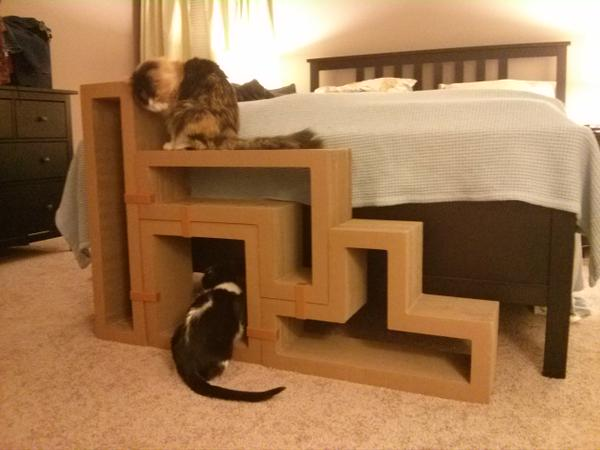 our cats on katris