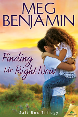 Review: Finding Mr. Right Now by Meg Benjamin