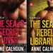Review: The SEAL's Secret Lover and The SEAL's Rebel Librarian by Anne Calhoun