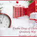 Twelve Days of Christmas Giveaway Hop