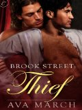 [cover of Thief]