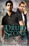 [cover of The Druid Stone]