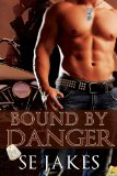 [cover of Bound by Danger]